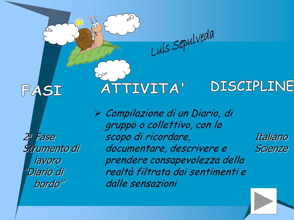 DISCIPLINE ATTIVITA FASI