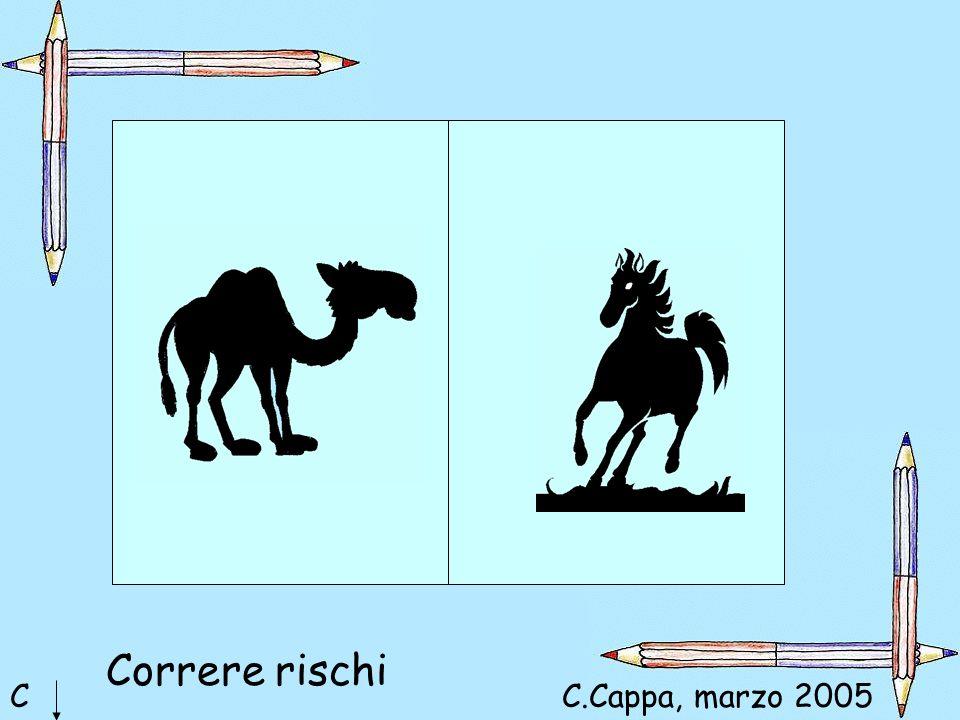 Correre rischi C C.Cappa, marzo 2005 Maria Cristina CORRERE RISCHI