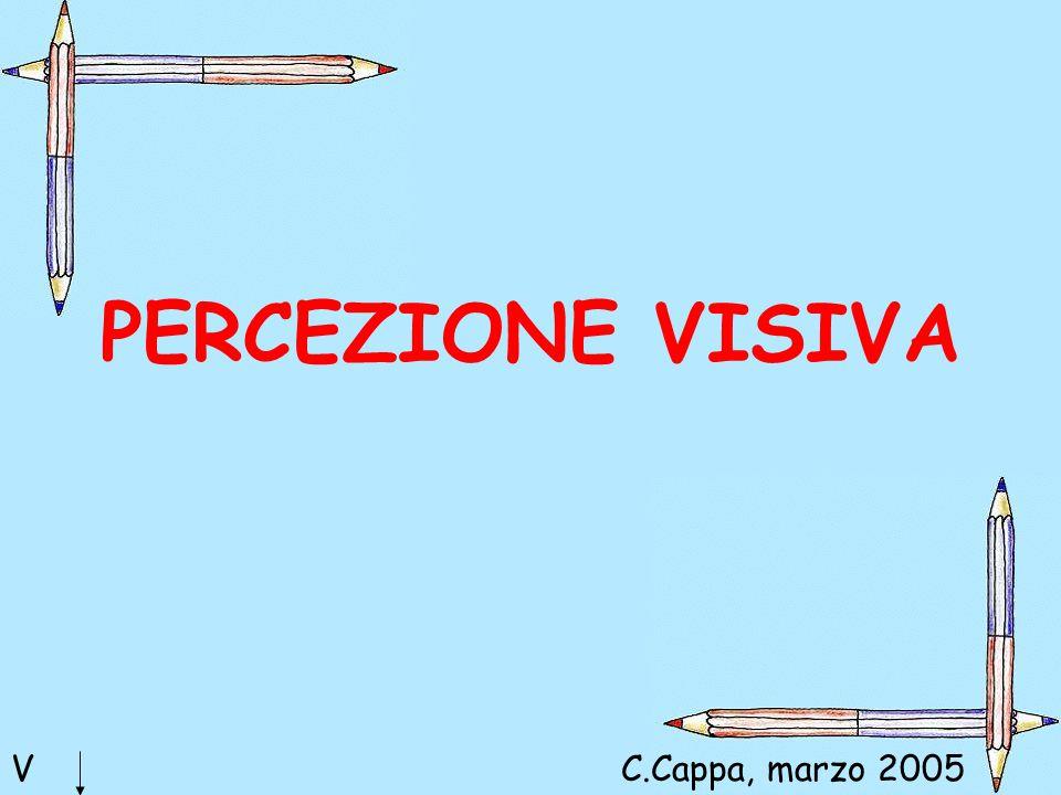 PERCEZIONE VISIVA V C.Cappa, marzo 2005