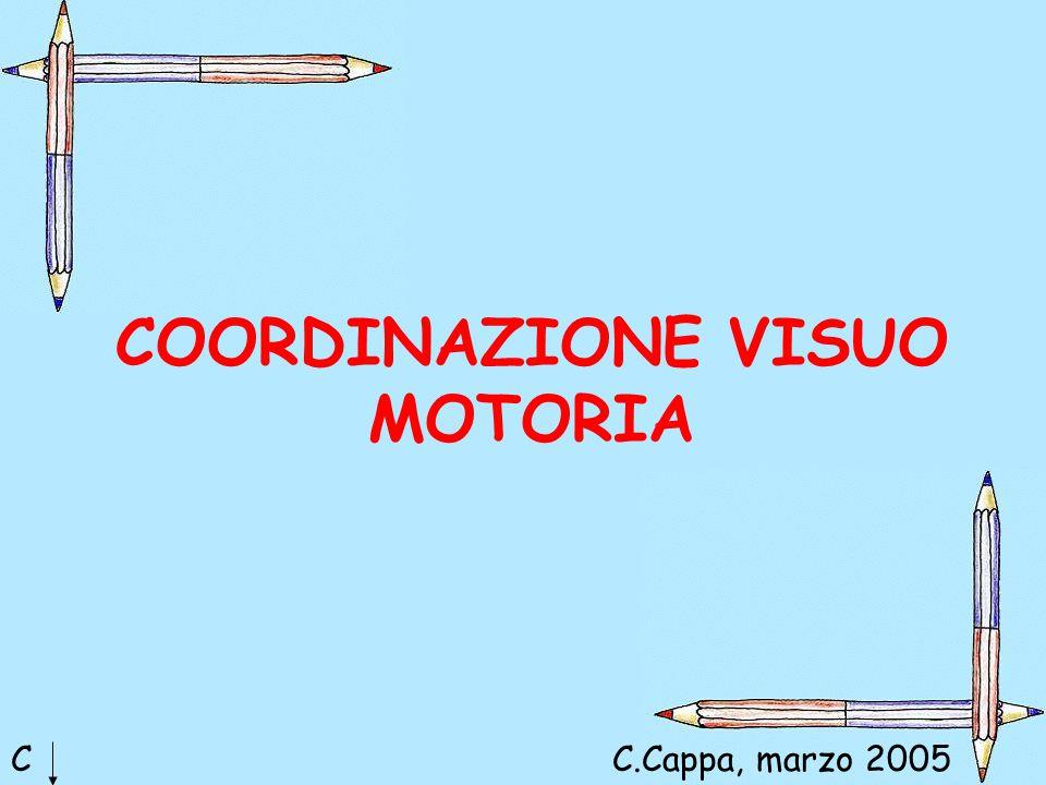 COORDINAZIONE VISUO MOTORIA