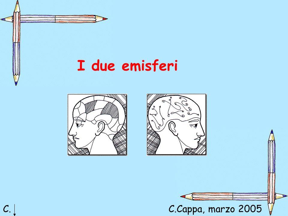 I due emisferi C. C.Cappa, marzo 2005 Claudia