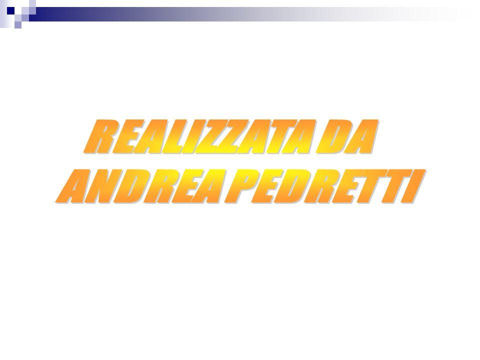 REALIZZATA DA ANDREA PEDRETTI