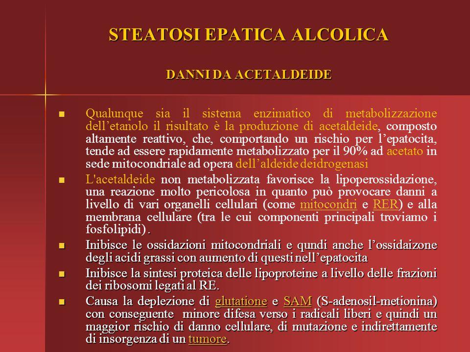 STEATOSI EPATICA ALCOLICA DANNI DA ACETALDEIDE