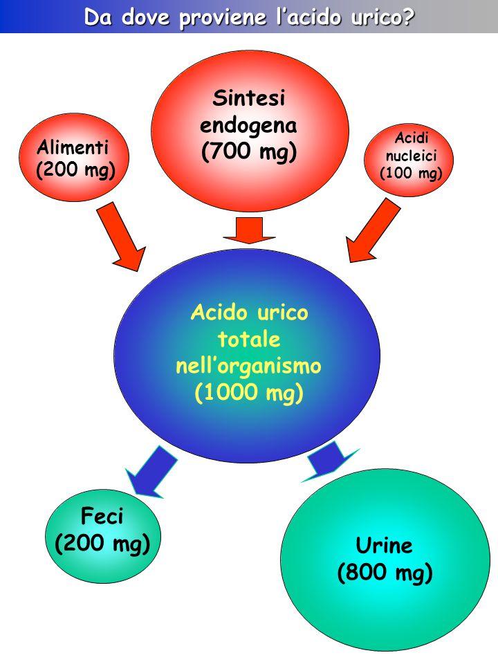 Da dove proviene l'acido urico