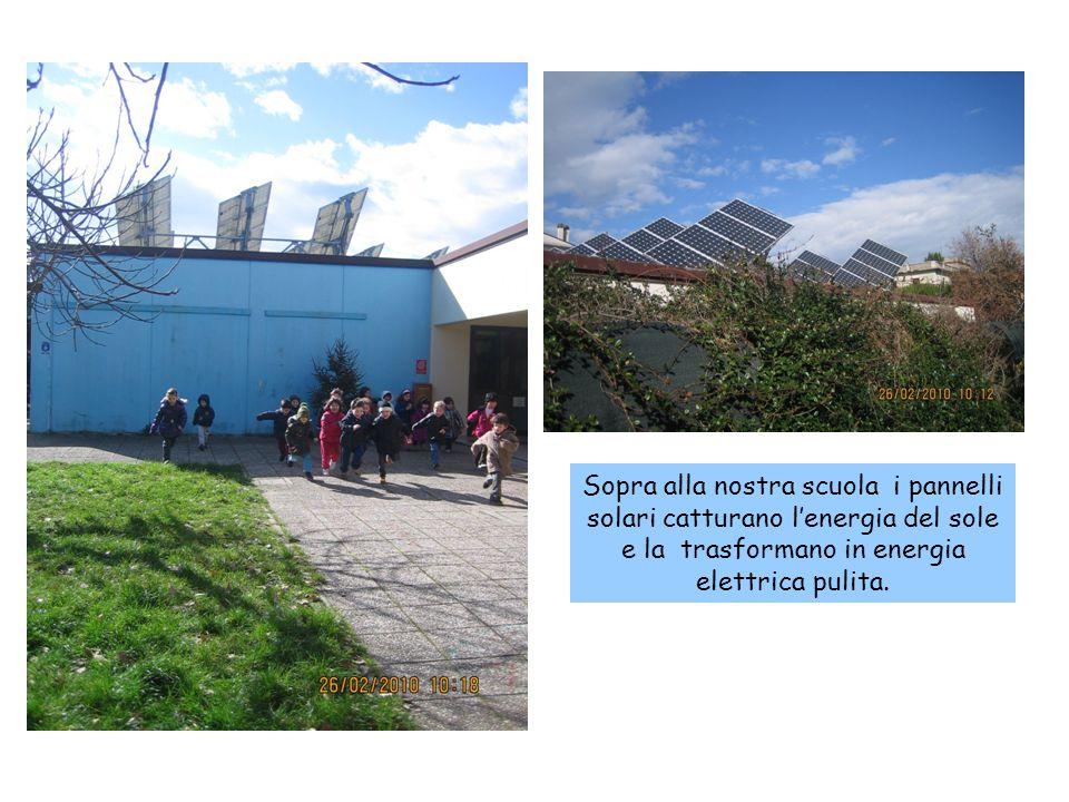 Sopra alla nostra scuola i pannelli solari catturano l'energia del sole e la trasformano in energia elettrica pulita.