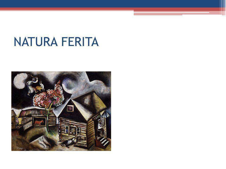 NATURA FERITA