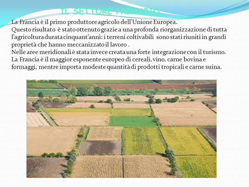 IL SETTORE PRIMARIO La Francia è il primo produttore agricolo dell'Unione Europea.