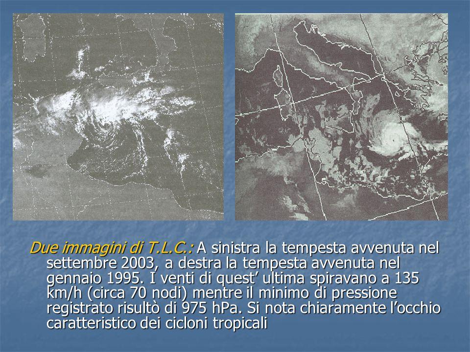 Due immagini di T.L.C.: A sinistra la tempesta avvenuta nel settembre 2003, a destra la tempesta avvenuta nel gennaio 1995.