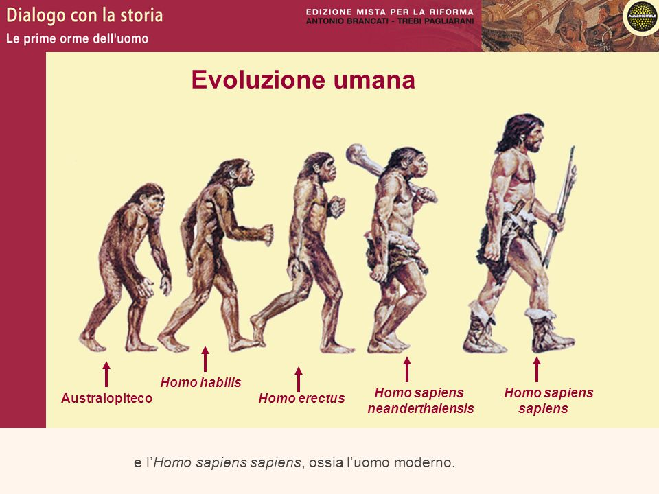 Evoluzione umana e l'Homo sapiens sapiens, ossia l'uomo moderno.