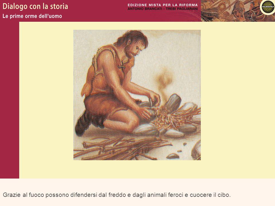 Grazie al fuoco possono difendersi dal freddo e dagli animali feroci e cuocere il cibo.