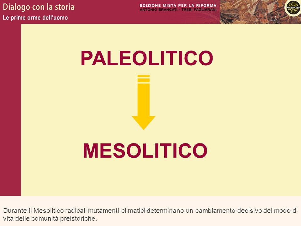 PALEOLITICO MESOLITICO