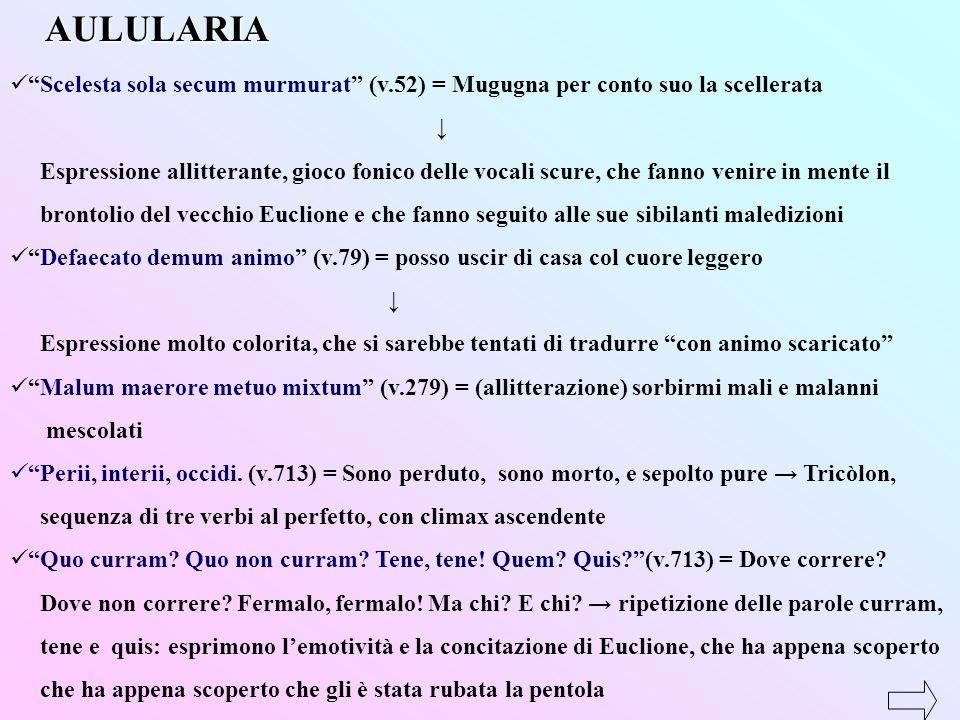 AULULARIA Scelesta sola secum murmurat (v.52) = Mugugna per conto suo la scellerata. ↓