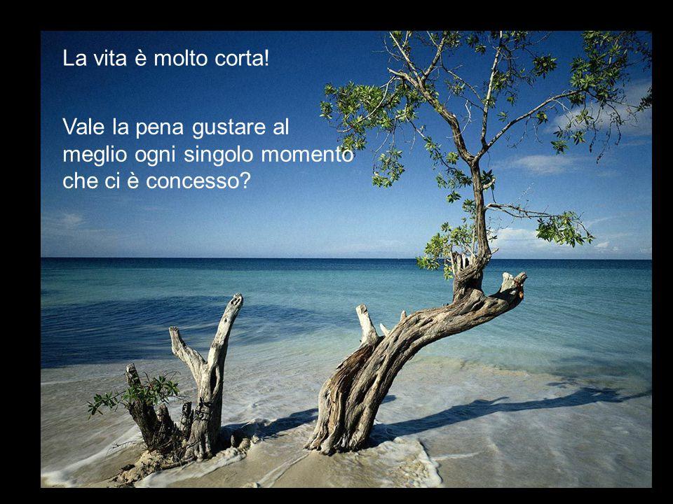 La vita è molto corta! Vale la pena gustare al meglio ogni singolo momento che ci è concesso