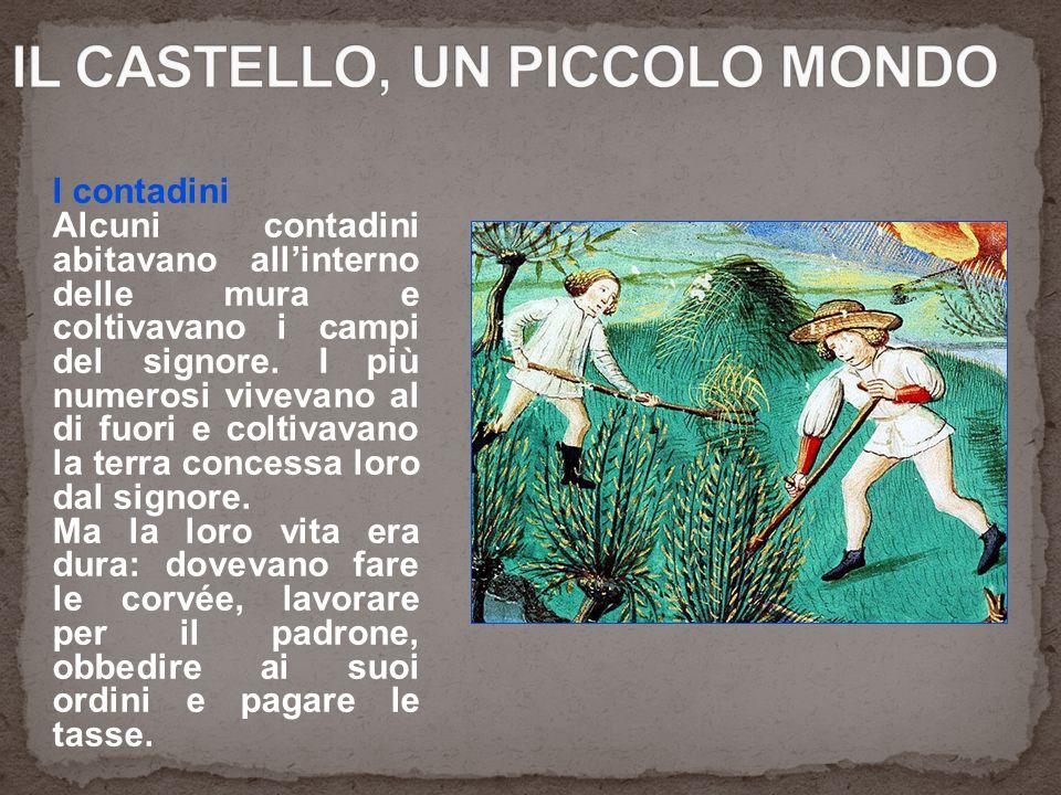 IL CASTELLO, UN PICCOLO MONDO