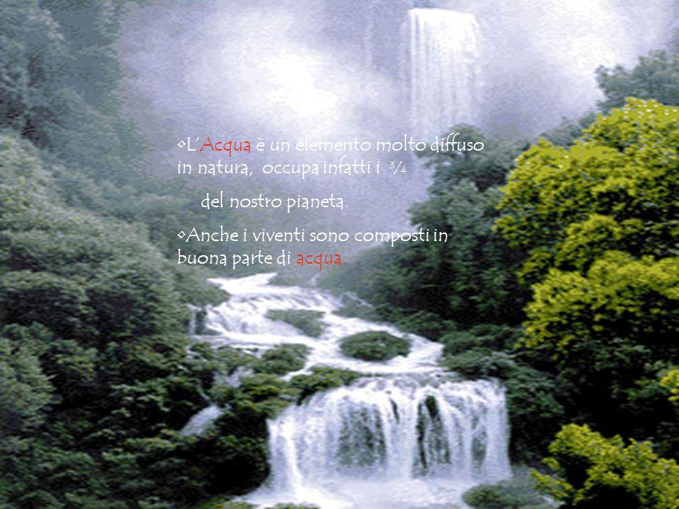 L'Acqua è un elemento molto diffuso in natura, occupa infatti i ¾