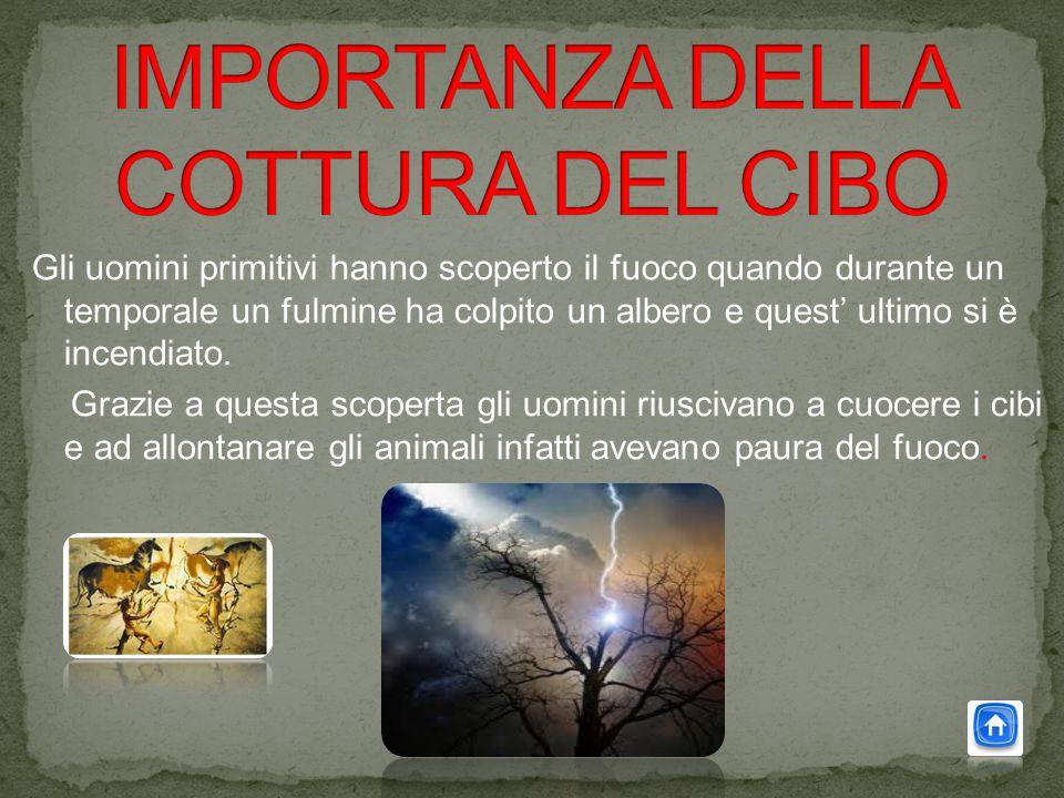 IMPORTANZA DELLA COTTURA DEL CIBO