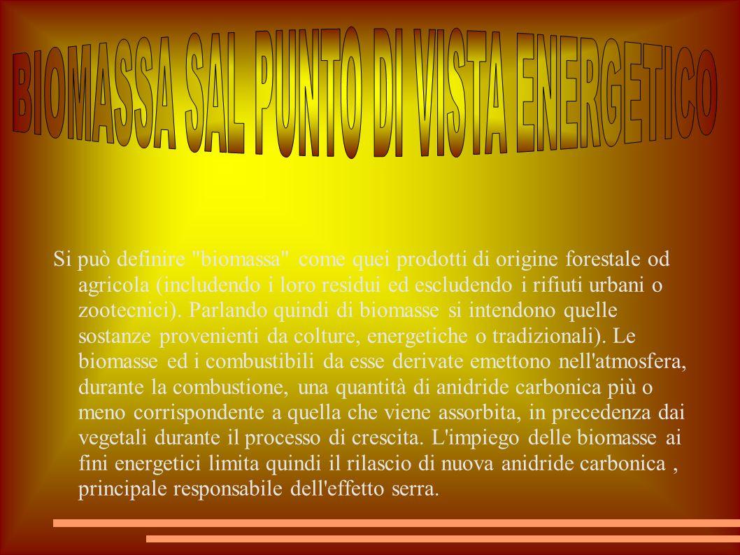 BIOMASSA SAL PUNTO DI VISTA ENERGETICO