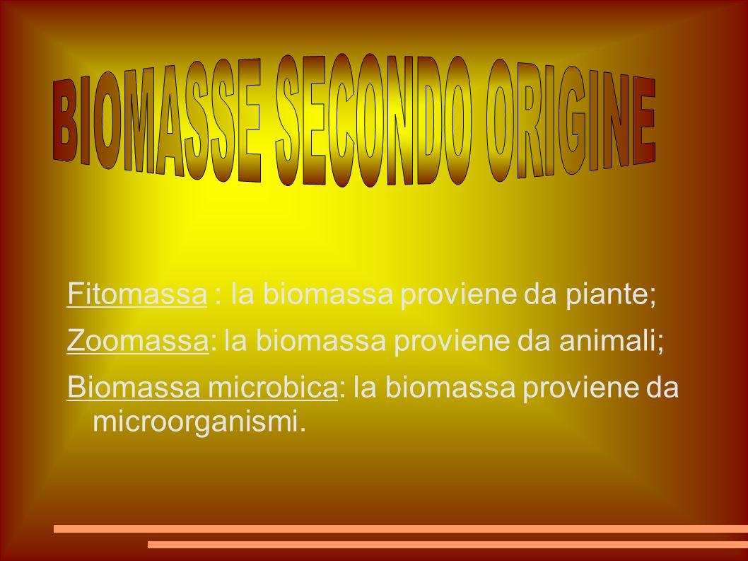 BIOMASSE SECONDO ORIGINE
