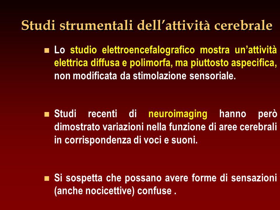Studi strumentali dell'attività cerebrale