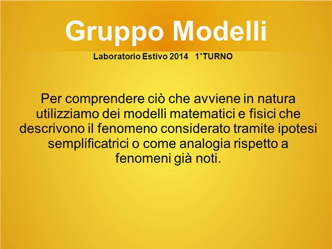 Gruppo Modelli Laboratorio Estivo 2014 1°TURNO.