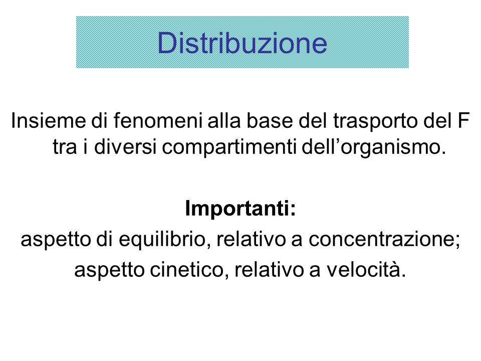 Distribuzione Insieme di fenomeni alla base del trasporto del F tra i diversi compartimenti dell'organismo.