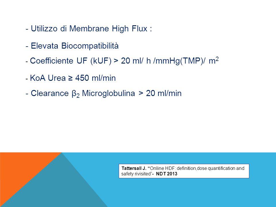 - Utilizzo di Membrane High Flux :