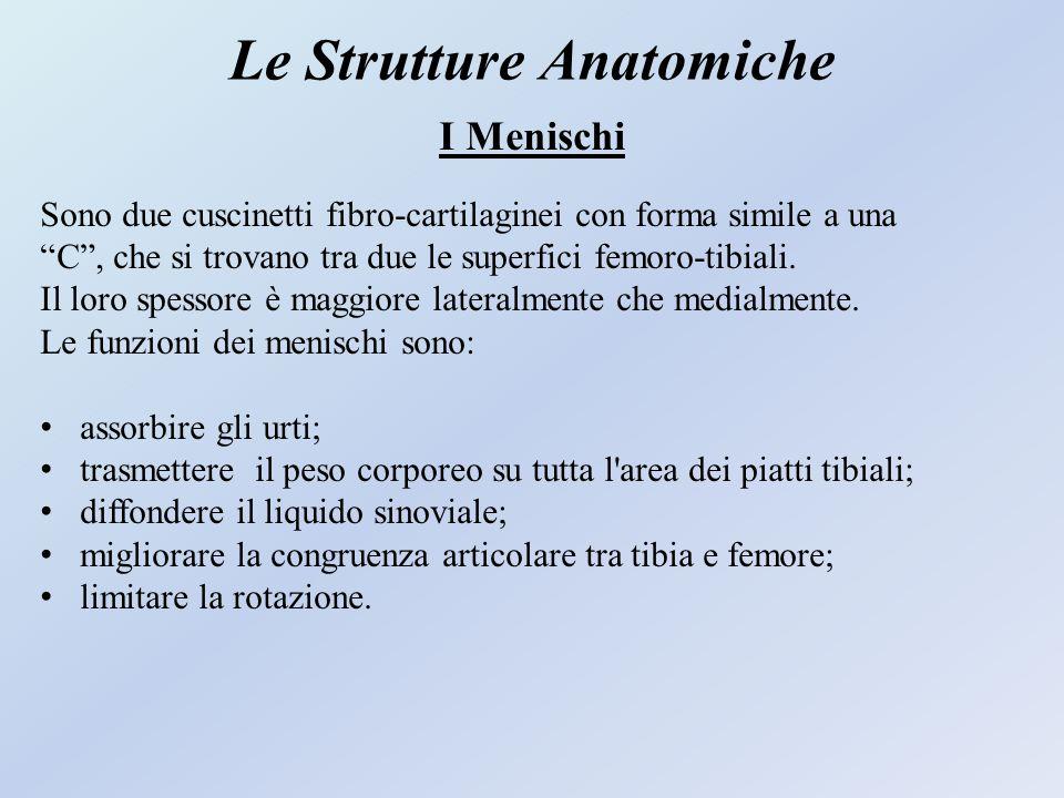 Le Strutture Anatomiche