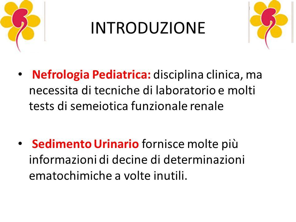 INTRODUZIONE Nefrologia Pediatrica: disciplina clinica, ma necessita di tecniche di laboratorio e molti tests di semeiotica funzionale renale.