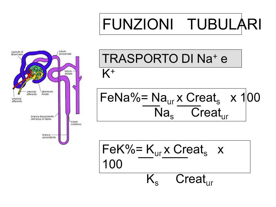 FUNZIONI TUBULARI TRASPORTO DI Na+ e K+ FeNa%= Naur x Creats x 100