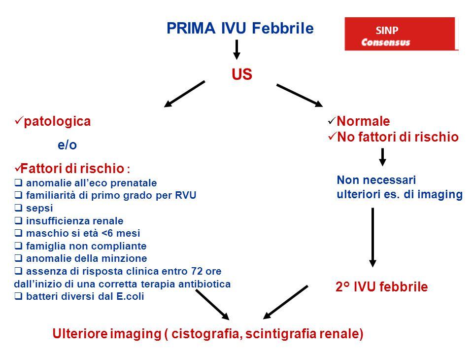 PRIMA IVU Febbrile US patologica No fattori di rischio e/o