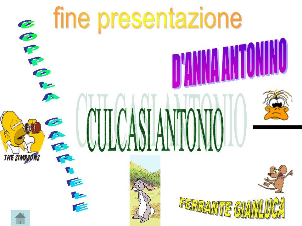 fine presentazione D ANNA ANTONINO COPPOLA GABRIELE CULCASI ANTONIO FERRANTE GIANLUCA
