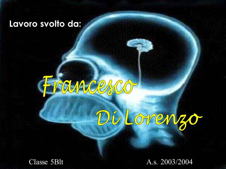 Lavoro svolto da: Francesco Di Lorenzo Classe 5Blt A.s. 2003/2004