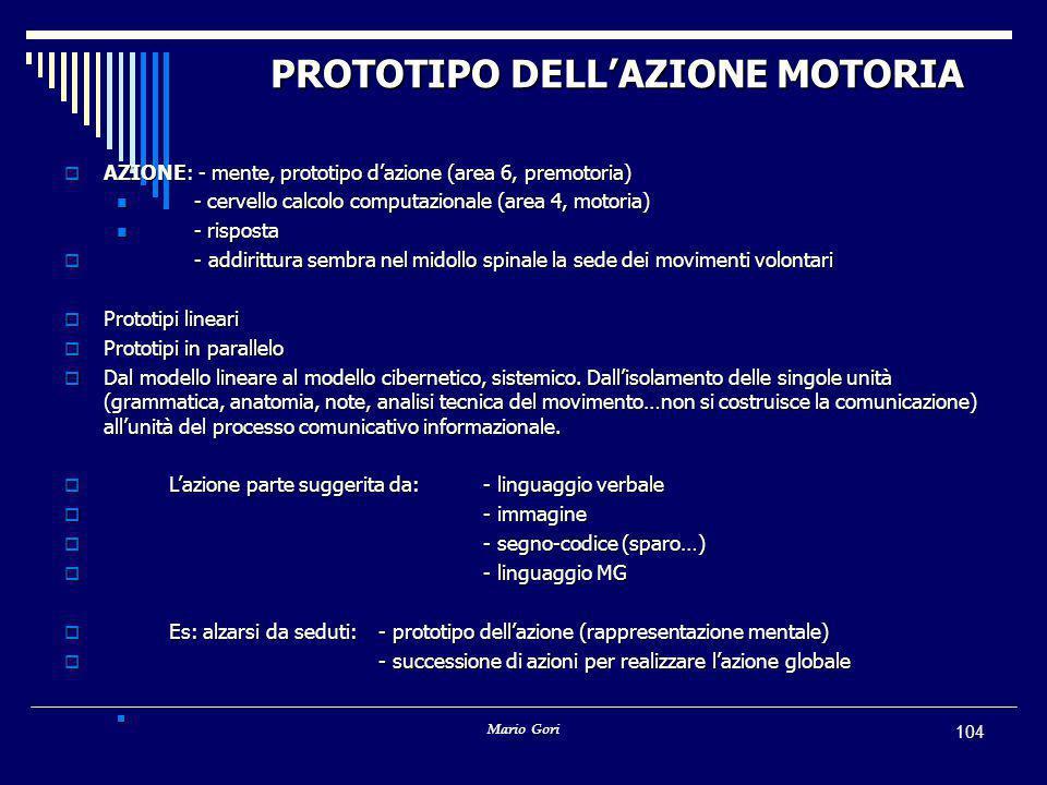 PROTOTIPO DELL'AZIONE MOTORIA