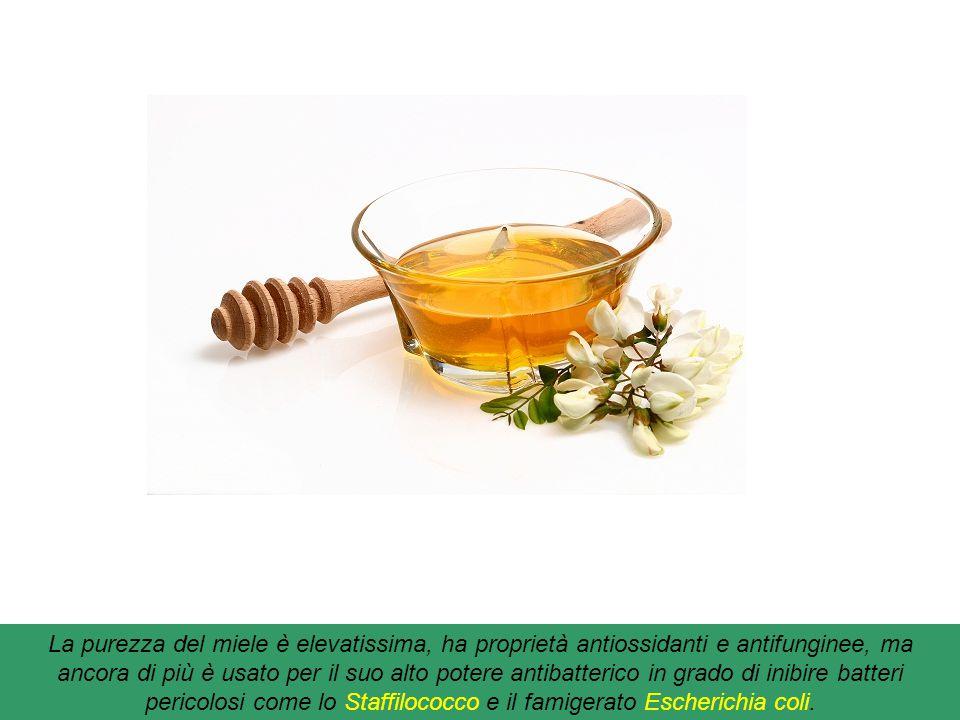 La purezza del miele è elevatissima, ha proprietà antiossidanti e antifunginee, ma ancora di più è usato per il suo alto potere antibatterico in grado di inibire batteri pericolosi come lo Staffilococco e il famigerato Escherichia coli.