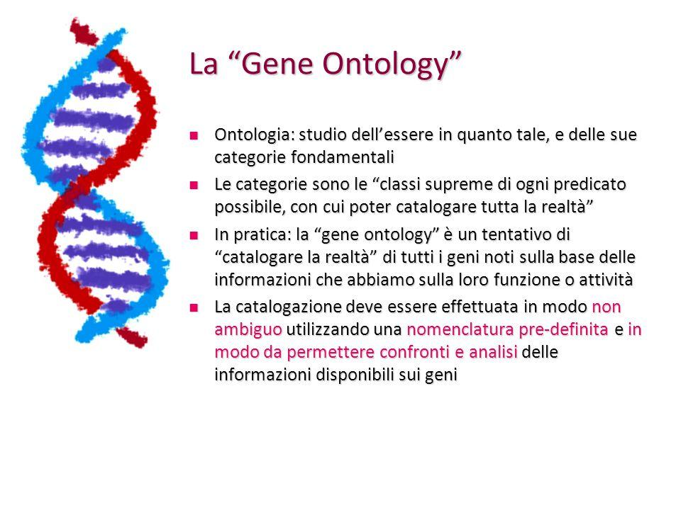 La Gene Ontology Ontologia: studio dell'essere in quanto tale, e delle sue categorie fondamentali.