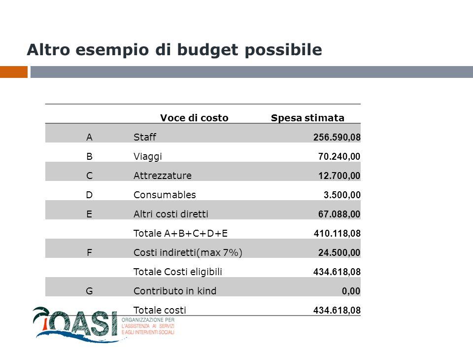 Altro esempio di budget possibile