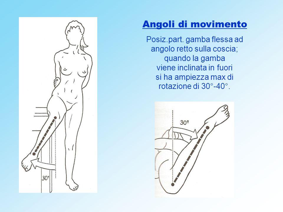 Angoli di movimento Posiz.part. gamba flessa ad