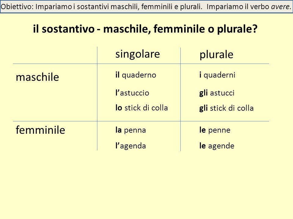 il sostantivo - maschile, femminile o plurale