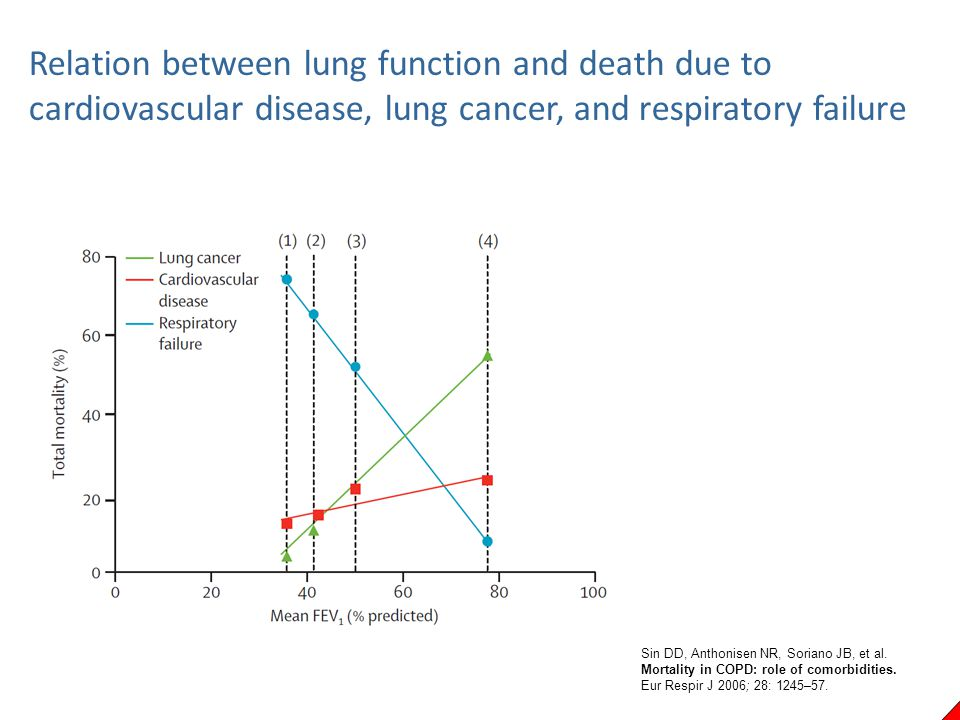 Relation between lung function and death due to cardiovascular disease, lung cancer, and respiratory failure