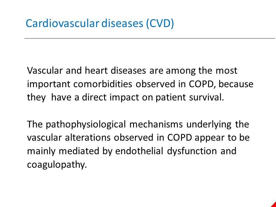 Cardiovascular diseases (CVD)