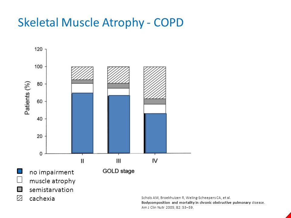 Skeletal Muscle Atrophy - COPD