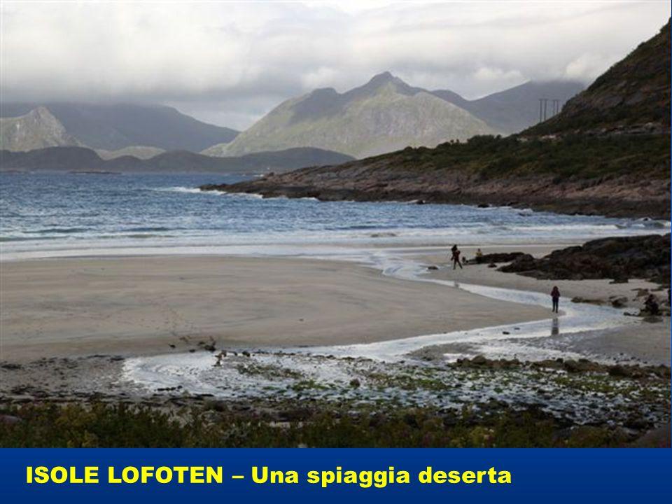 ISOLE LOFOTEN – Una spiaggia deserta