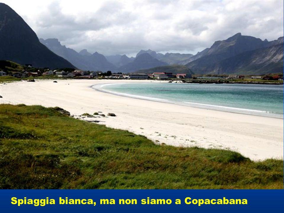 Spiaggia bianca, ma non siamo a Copacabana