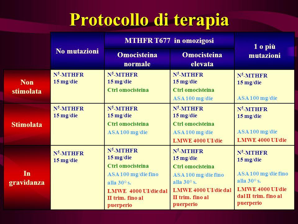 Protocollo di terapia No mutazioni MTHFR T677 in omozigosi