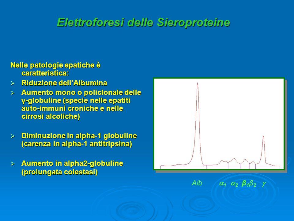 Elettroforesi delle Sieroproteine