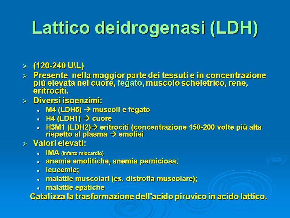 Lattico deidrogenasi (LDH)