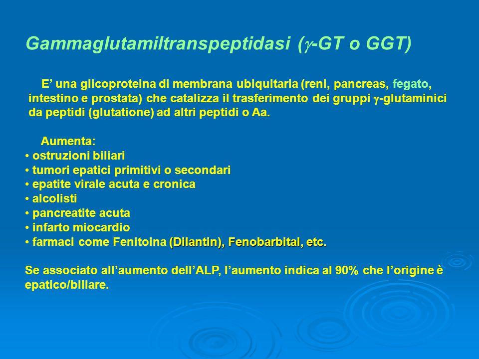 Gammaglutamiltranspeptidasi (-GT o GGT)