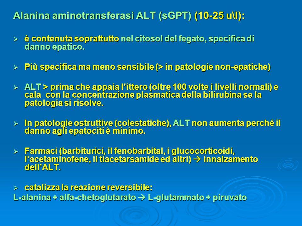 Alanina aminotransferasi ALT (sGPT) (10-25 u\l):