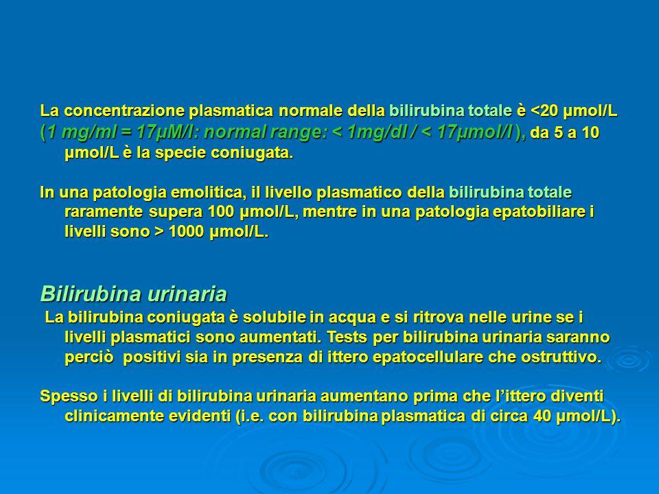 La concentrazione plasmatica normale della bilirubina totale è <20 μmol/L