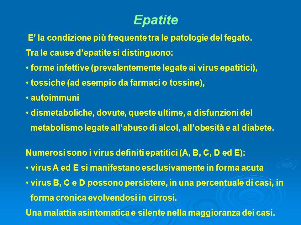 Epatite E' la condizione più frequente tra le patologie del fegato.